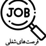 فرصت های شغلی :